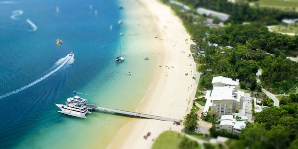 Tangalooma Resort Tours & Accommodation